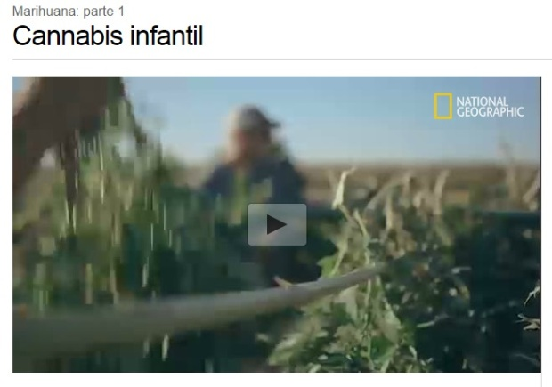 Cannabis medicinal infantil